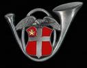 Insigne du 13 BCA
